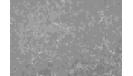 02_1550296362-e76c64872ce2967b5c79e73026a94a6f.jpg