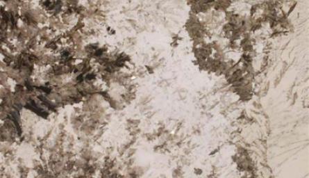 alpine-white-1_1442450344-9b54d7b343f3e612a57f7d6392632565.png