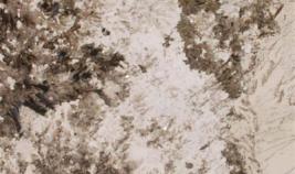 alpine-white-1_1442450344-c1993f389089e7e8cada594cff2948b4.png