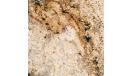 siena-beige-1_1452964787-edf5bd049b285ab6c8b4f88ae911f955.png